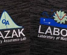 Vezenje logo Labod in Lazak